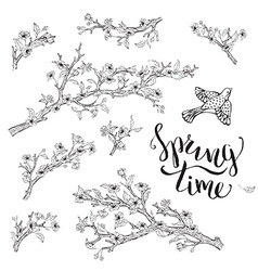 set of spring branches isolated on white vector image vector image
