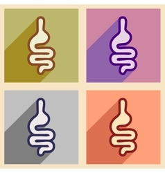 Icons of assembly human intestines in flat style vector