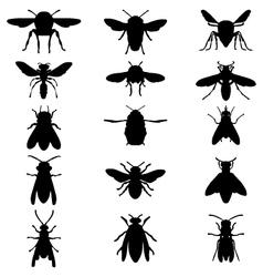 bees and wasps vector image