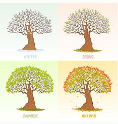 big tree seasons vector image