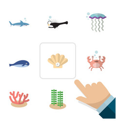 Flat icon nature set of shark cachalot medusa vector