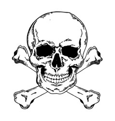 jolly roger engraving style vector image vector image