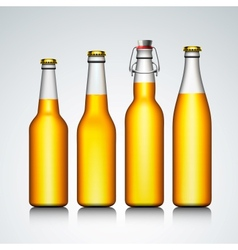 Beer bottle clear set with no label vector image