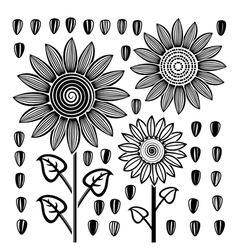 Sunflowers and seeds vector
