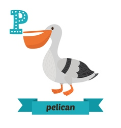 Pelican p letter cute children animal alphabet in vector
