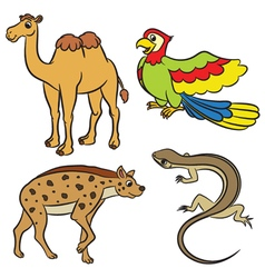 Animal set hyena lizard parrot camel vector