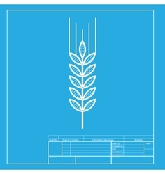 Wheat sign  white section of icon on vector