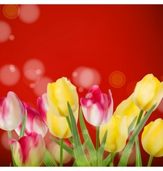 Beautiful bouquet tulips on red EPS 10 vector image
