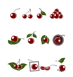 Cherry icons set vector