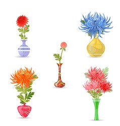 collection modern vases with chrysanthemums for vector image