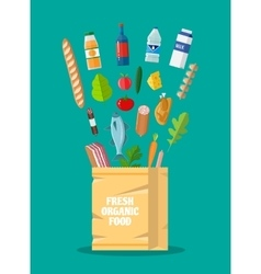 Fresh healthy organic produce and paper bag vector