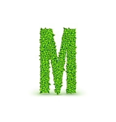 Green Leaves font M vector image vector image