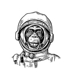Monkey in astronaut helmet vintage black vector