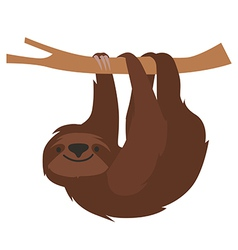 Cute sloth vector