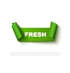 Green curved paper ribbon banner with rolls and vector