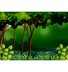 Green forest vector image vector image