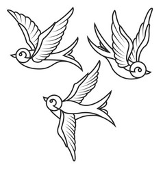 set of swallow tattoo templates isolated on white vector image