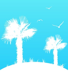 Summer background with palm trees and seagulls vector
