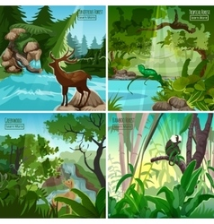 Forest Landscape 4 Flat Icon Square vector image