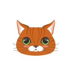 Cute red cat head funny cartoon animal character vector