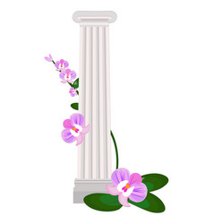 Greek ionic columns order vintage design vector
