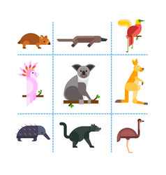 Australia wild animals cartoon popular nature vector