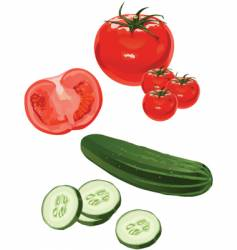 tomato cucumber vector image