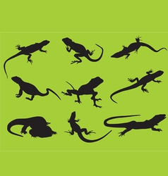 silhouettes of a lizard vector image vector image