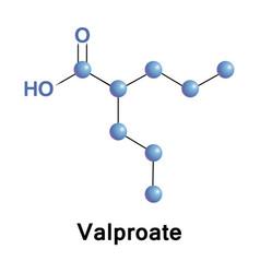 Valproate epilepsy treatment vector