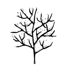 A withered tree vector