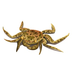 Brown marble crab isolated vector image