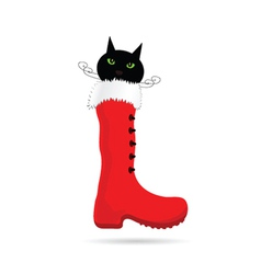 cat and new year boot color vector image vector image