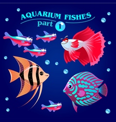 freshwater aquarium fishes vector image