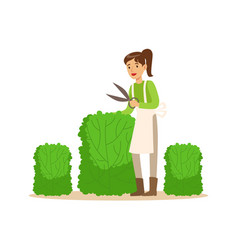 young woman gardener working with hedge shear vector image vector image