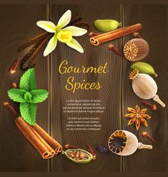 Spices on dark background vector