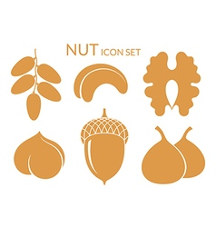 Nuts Icon set Isolated fruit on white vector image