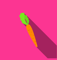 carrot icon flate singe vegetables icon from the vector image vector image