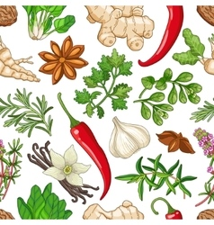 Hot pattern with herbs on white vector
