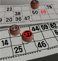 Bingo lotto vector