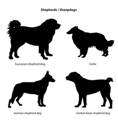 Dog breed silhouette pet icon set sheped dog vector
