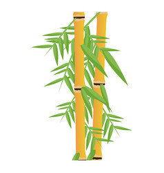 Fresh bamboo leaves botanical zen forest tropical vector