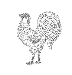 hand-drawn ornamental style rooster Great for vector image vector image