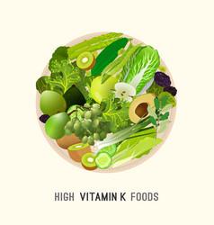 vitamin k in food vector image vector image