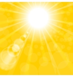 Abstract Sun Background Yellow Summer Pattern vector image