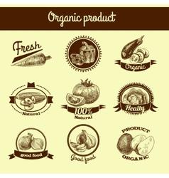 Vegetables sketch banner set vector