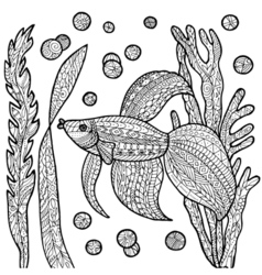 Fish coloring page vector image