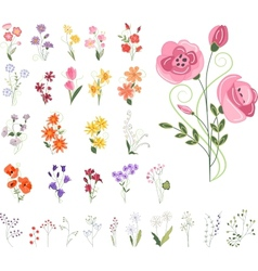 Collection of different stylized flowers vector
