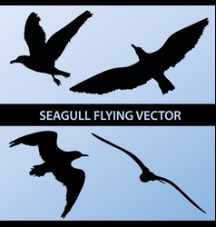 Set of silhouette seagull flying 4 in 1 on blue vector