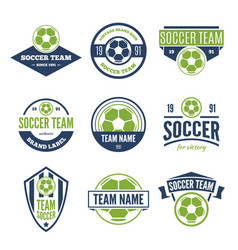collection of white green and blue soccer vector image