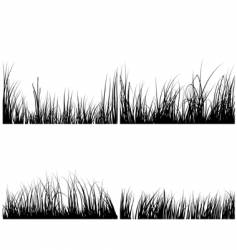 set of grasses vector image vector image